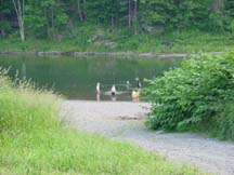 swimmers and kayakers in the river