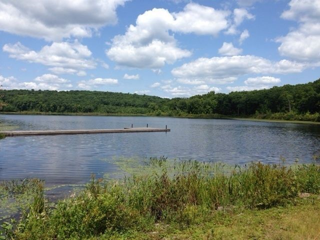 Picturesque view of Cobey Pond.