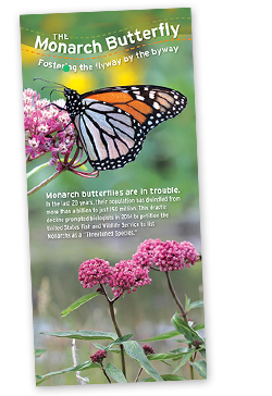 monarch brochure